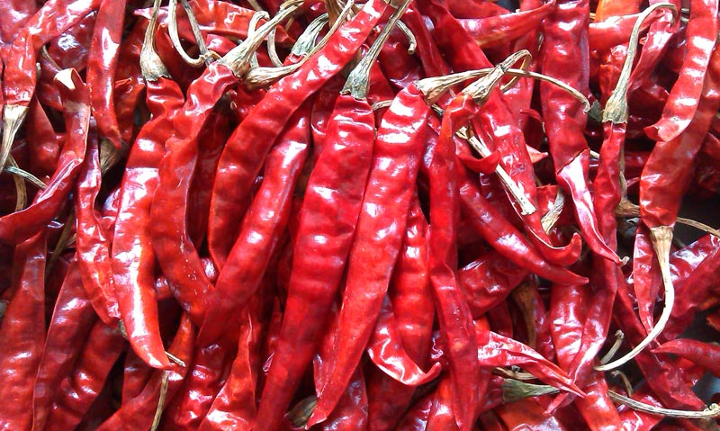 how to cook with dried chillies