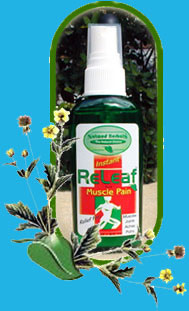 scope and limitation of insect repellent