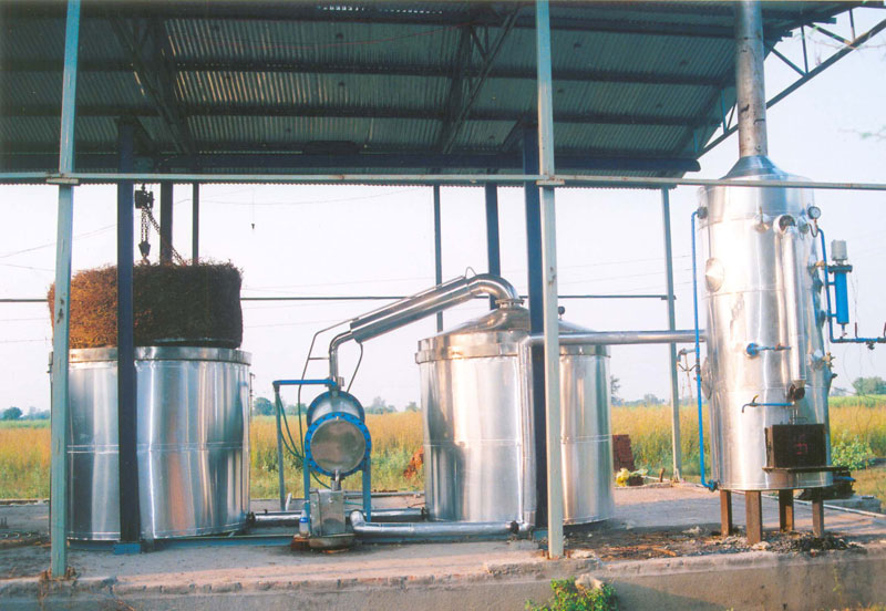 Products Essential Oil Distillation Plant Manufacturer