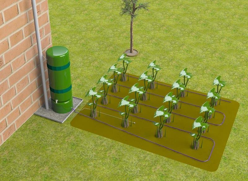 Buy Garden Irrigation System from Plantpal Enterprise Ltd
