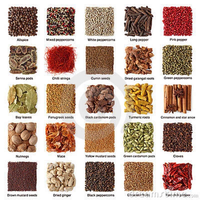 Popular Indian Food Names