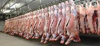 Meat Processing Plants