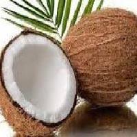 4. Semi Husked Coconut (fresh Coconut)