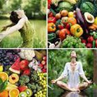 Organic Fruit Herbs