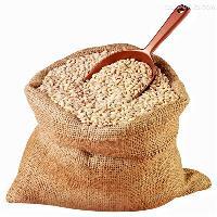 Feed Grade Barley