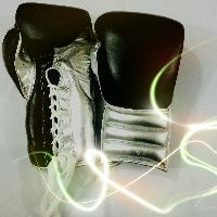 Boxing Gloves Premium Quality Genuine Leather