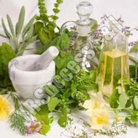 Herbal Plant - Wholesale Suppliers,  Tamil Nadu - YR Success E & I