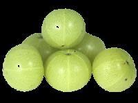 Amla Extract - Antioxidant