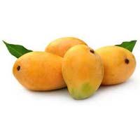 Fresh Hapus Mango