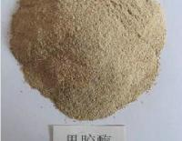 Feed Grade Enzymes