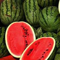 Fresh Water Melon