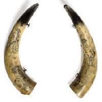 Cow Horns