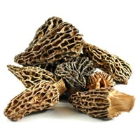 Dried Wild Morels