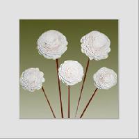 Shola Flowers