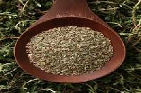 Thyme Seed