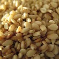 Fresh Sesame Seed