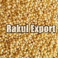 Great Millet Seeds