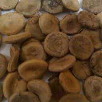 Nuxvomica Seeds (kuchila)