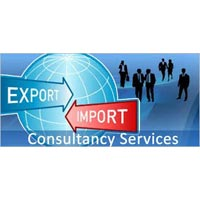 Export Import Consulting Services