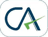 Consultant Cfo Services