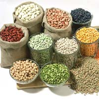 Indian Pulses - Manufacturer, Exporters and Wholesale Suppliers,  Maharashtra - M S Nitin Kumar Joshi