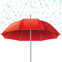 Insurance Management Services