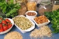 Organic Processed Food