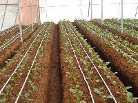 Agro Drip Irrigation System