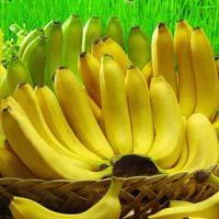 Fresh Robusta Banana