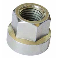 Automotive Flange Nuts