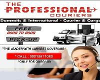 Professional Couriers Services