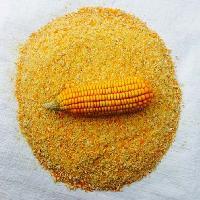 Feed Maize