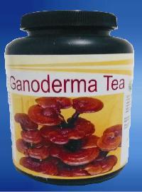 Ganoderma Tea