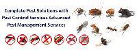 General Pest Control Service