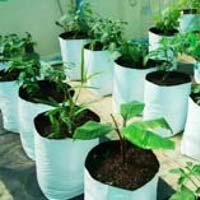 Plant Grow Bags