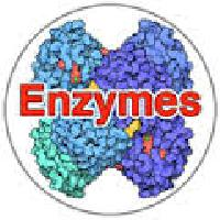 Food Enzymes - Manufacturer, Exporters and Wholesale Suppliers,  Karnataka - Pan Millenium Trade Links Limited
