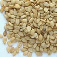 Indian Natural Sesame Seeds White