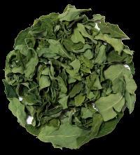 Moringa Oleifera Leaf