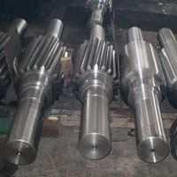 Drive Shaft Assembly