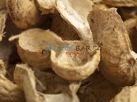 Peanut Shells