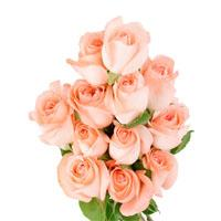 Online Flower Delivery Services