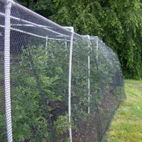 Bird Net Installation Service