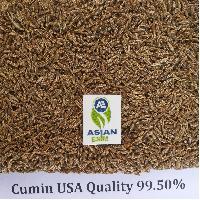 Cumin Seed USA Quality