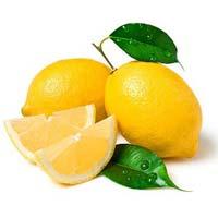 Fresh Lemon - Manufacturer, Exporters and Wholesale Suppliers,  Tamil Nadu - Kishan Impex