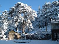 Manali Tour Services