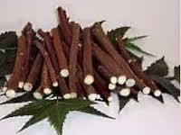 Chew Sticks Neem