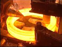 Ring Roll Forging