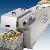 Fruit Washer