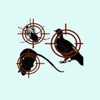 Bird Management Services
