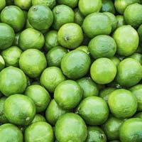 Fresh Rutaceae Lemon
